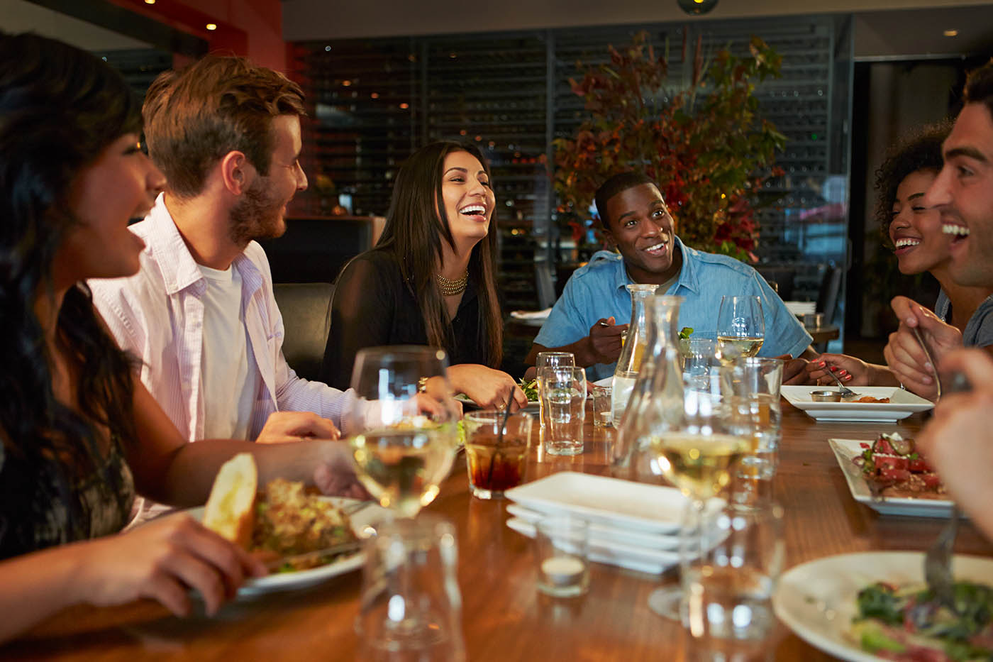 Friends_Dinner_60158682